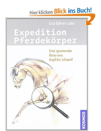 Expedition Pferdekörper