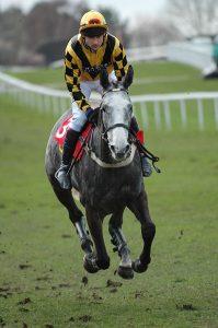 gangart gallop