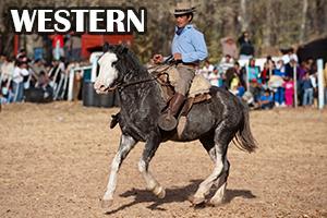 western-reiten