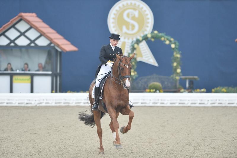 Fotograf: Karl-Heinz Frieler für Horses & Dreams