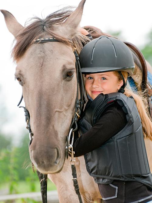 charakter-pferd
