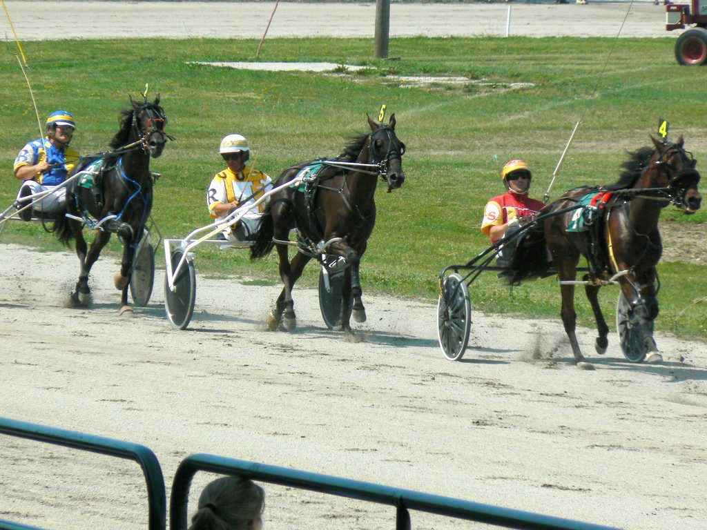Harness_racing_969996243