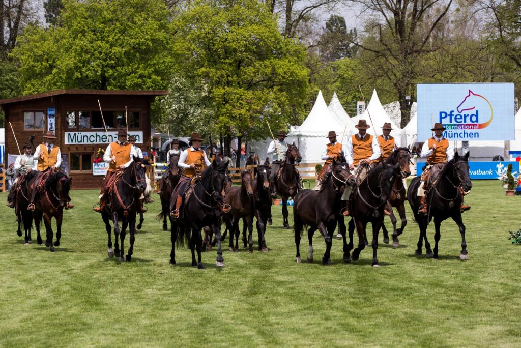 FireShot Screen Capture #692 - 'Alle Bilder Pferd International 2016 in München-Riem' - www_pferdinternational-muenchen_de_2016_alle-bilder-pferd-international-muenchen-2016